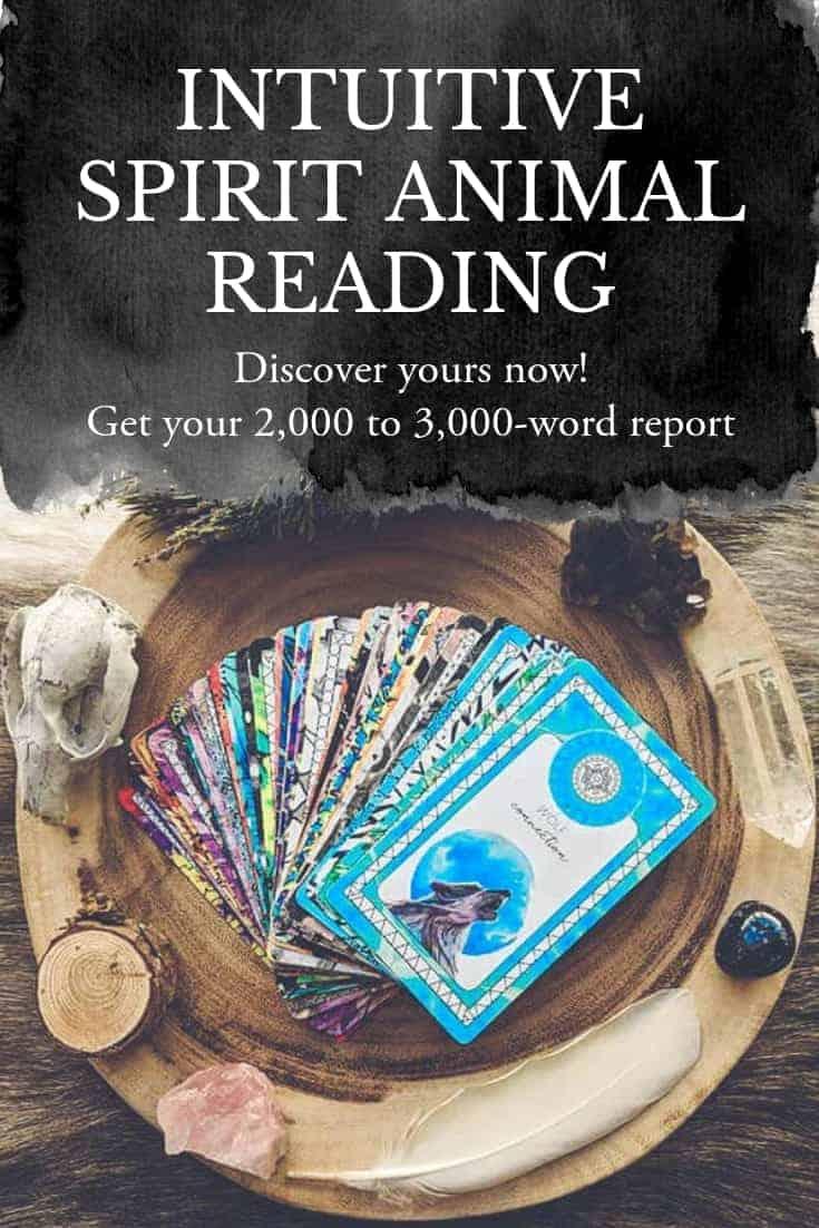 Spirit Animal Reading (PDF + MP3)