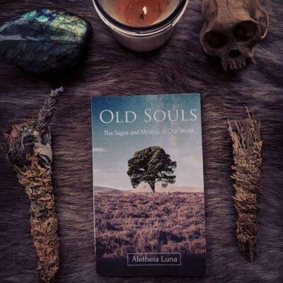Image of Old Souls book