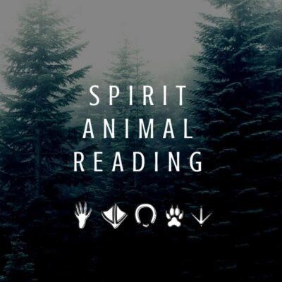 Spirit Animal Reading Cover